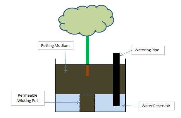 Self Watering Planter Basic Design